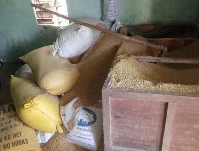Gia đình một nông dân báo mất 49 cây vàng trị giá khoảng 1,8 tỉ đồng - Ảnh 2.