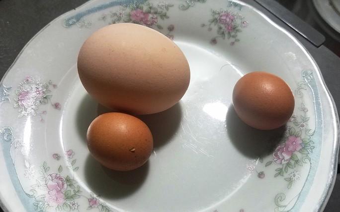 Kỳ lạ gà trống đẻ trứng ngày cận Tết - Ảnh 1.