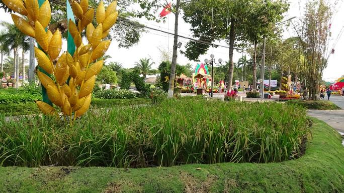 Lục bình, sen lên đường hoa Xuân ở thủ phủ đất Sen hồng Đồng Tháp - Ảnh 18.