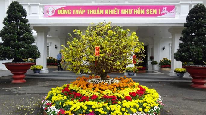 Trụ sở UBND tỉnh Đồng Tháp thân thiện đón khách du Xuân - Ảnh 16.