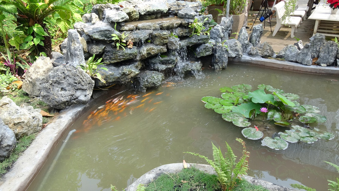Trụ sở UBND tỉnh Đồng Tháp thân thiện đón khách du Xuân - Ảnh 8.