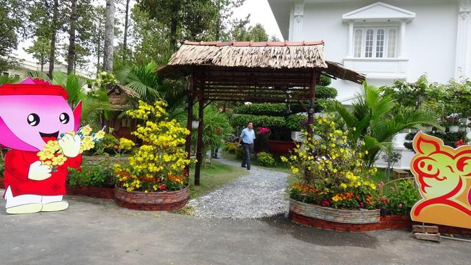 Trụ sở UBND tỉnh Đồng Tháp thân thiện đón khách du Xuân - Ảnh 9.