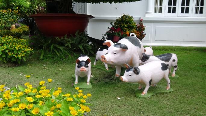 Trụ sở UBND tỉnh Đồng Tháp thân thiện đón khách du Xuân - Ảnh 18.