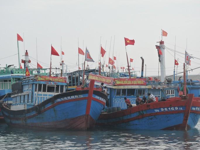 Ngư dân Lý Sơn: Khai tàu mở cửa biển đầu năm - Ảnh 2.