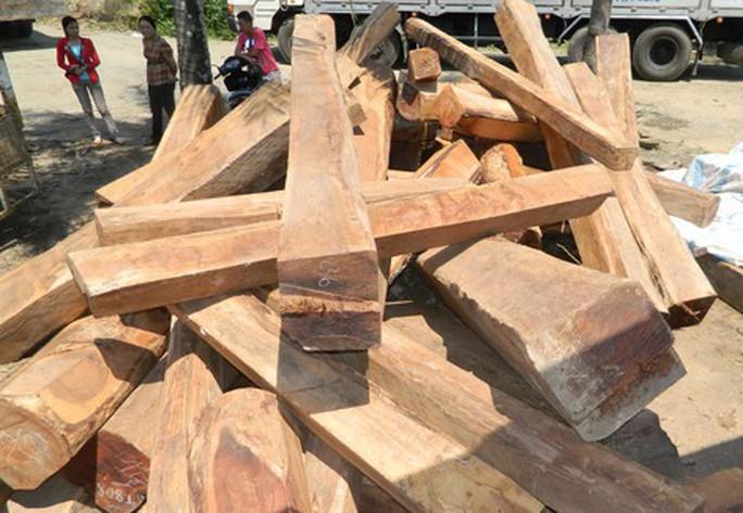 Quảng Nam: Nam công nhân bị gỗ đè chết - Ảnh 1.