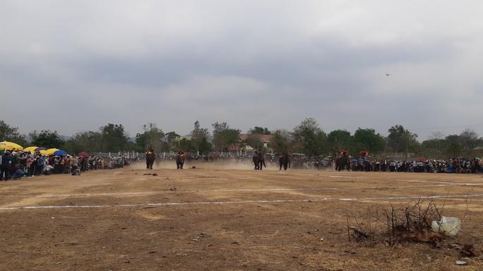 Hàng ngàn người đội nắng xem voi dự tiệc buffet, đá bóng, chạy đua - Ảnh 2.