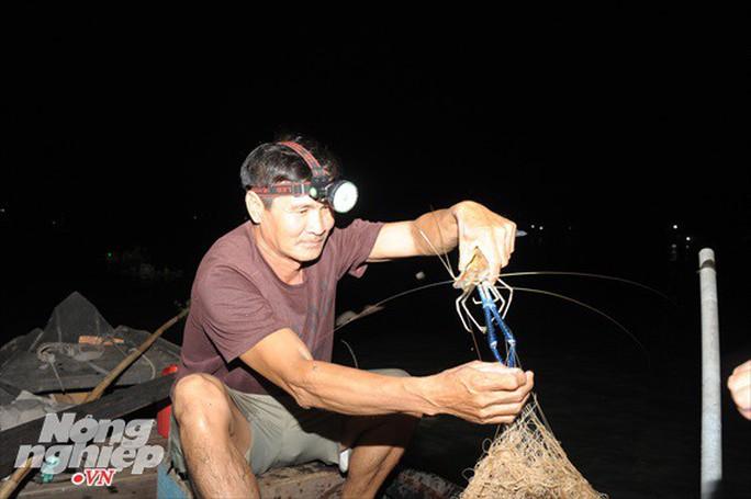 Sướng mắt theo ghe miền Tây săn tôm càng, cá bông lau - Ảnh 13.