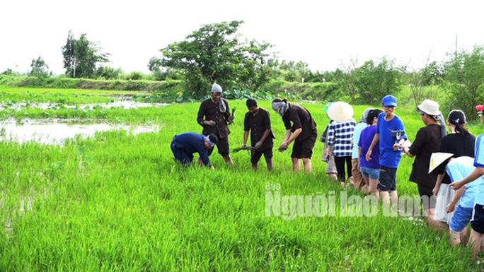 Về Đồng Tháp thích thú khi trải nghiệm du lịch nông nghiệp sạch - Ảnh 2.