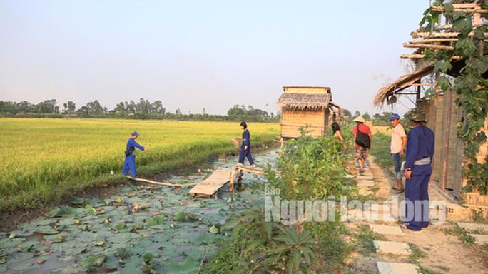 Về Đồng Tháp thích thú khi trải nghiệm du lịch nông nghiệp sạch - Ảnh 4.