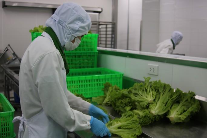 Khám phá bếp ăn đặc biệt làm 22.000 suất ăn/ngày cho các chuyến bay - Ảnh 5.