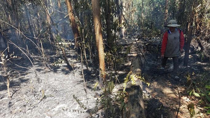 200 người đang chữa cháy rừng ở Gia Lai - Ảnh 1.