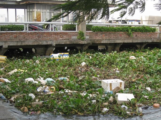 Cần bàn tay sắt và sự đồng lòng để dẹp nạn xả rác - Ảnh 1.
