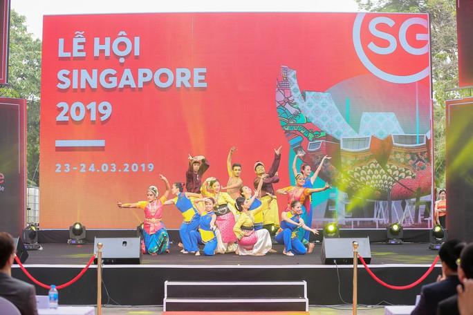Rực rỡ Lễ hội Singapore 2019 tại phố đi bộ hồ Hoàn Kiếm - Ảnh 14.
