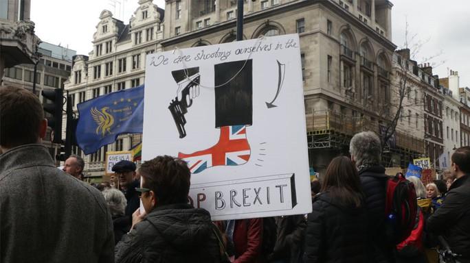 Anh: Biểu tình quy mô lớn đòi trưng cầu dân ý lần 2 về Brexit - Ảnh 2.