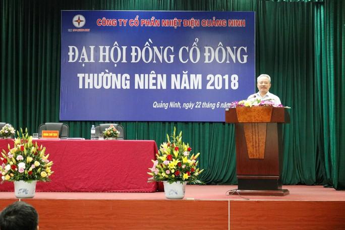 Bắt khẩn cấp Chủ tịch HĐQT Công ty CP Nhiệt điện Quảng Ninh - Ảnh 1.