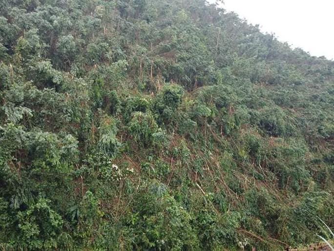 Lốc xoáy kinh hoàng gây thiệt hại nặng ở Quảng Nam - Ảnh 6.