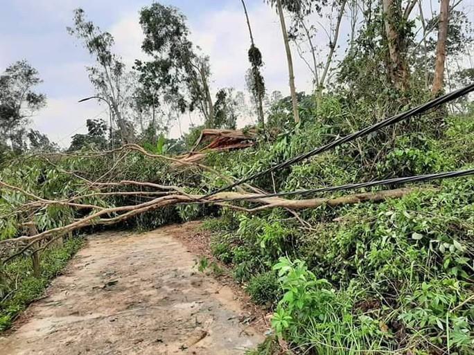 Lốc xoáy kinh hoàng gây thiệt hại nặng ở Quảng Nam - Ảnh 3.