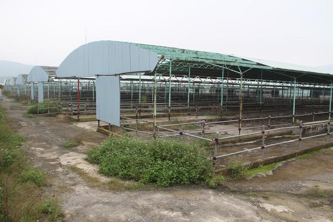 Bộ Công an yêu cầu định giá dự án nuôi bò ngàn tỉ liên quan đến cha con Trần Bắc Hà - Ảnh 1.