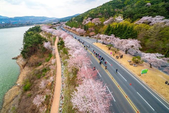 Hàn Quốc mở trung tâm đăng ký visa tại TP HCM - Ảnh 1.