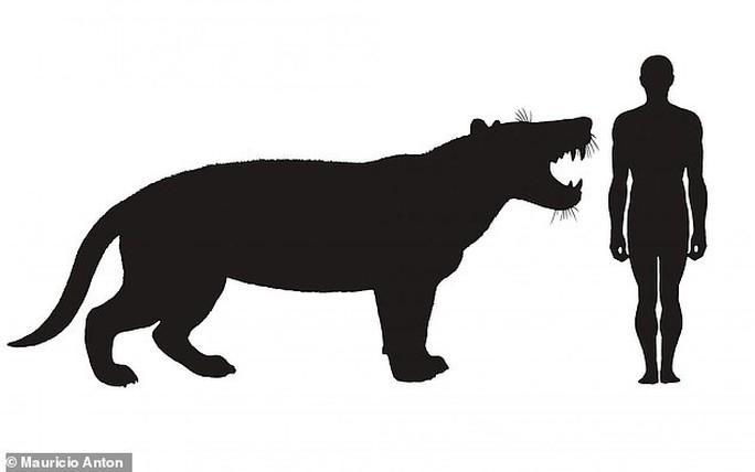 Phục dựng quái thú bí ẩn răng sói, mình sư tử, sọ như tê giác - Ảnh 1.
