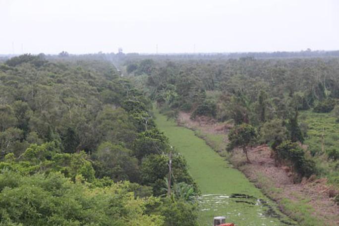 Hàng ngàn hecta rừng ở Cà Mau có nguy cơ cháy - Ảnh 1.