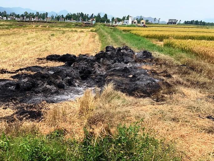 Bị côn đồ đốt cháy rơm vì chưa làm luật bảo kê… cánh đồng - Ảnh 1.