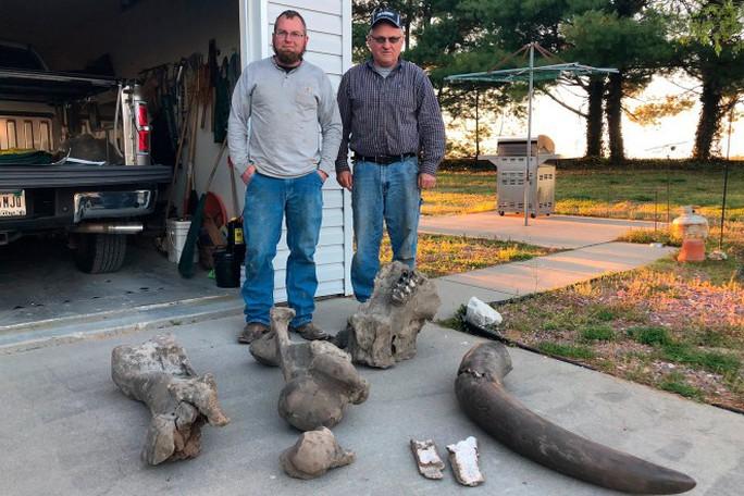 Nông dân phát hiện siêu voi huyền thoại mastodon giữa đồng - Ảnh 3.