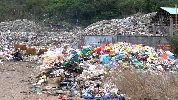 Cần khoảng 70 tỉ đồng để đưa rác từ Côn Đảo về đất liền xử lý - Ảnh 1.