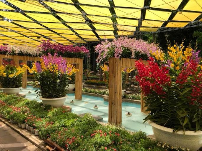 Festival Hoa lan TP HCM khai mạc, miễn phí cho khách tham quan - Ảnh 4.