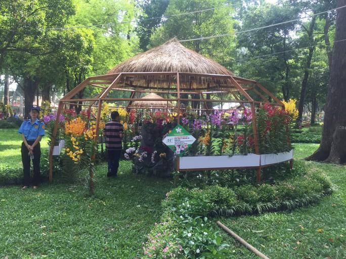 Festival Hoa lan TP HCM khai mạc, miễn phí cho khách tham quan - Ảnh 7.