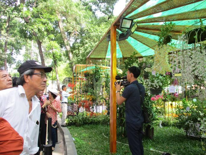 Festival Hoa lan TP HCM khai mạc, miễn phí cho khách tham quan - Ảnh 3.