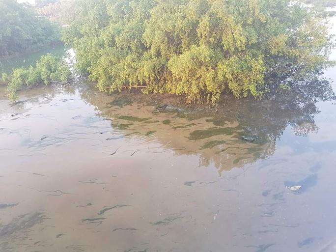 Nước thải tràn ra sông Hàn: Sở TN-MT Đà Nẵng truy tìm nguyên nhân - Ảnh 2.