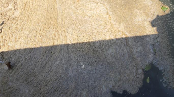 Nước thải tràn ra sông Hàn: Sở TN-MT Đà Nẵng truy tìm nguyên nhân - Ảnh 3.