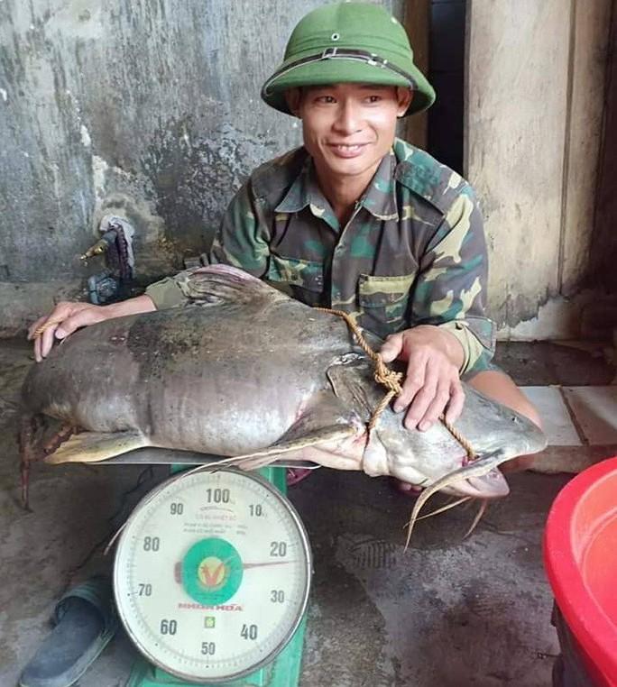"""Ngày lễ, thả câu bắt được cá ghé """"khủng"""" 22 kg, dài hơn 1 m - Ảnh 1."""