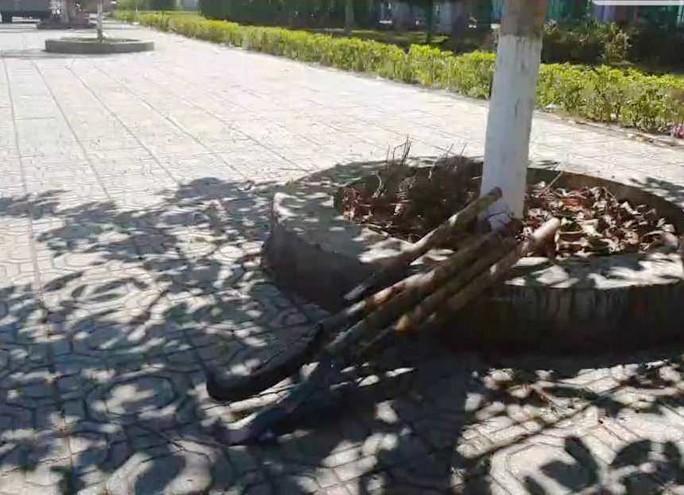 Lâm Đồng: Phóng viên bị côn đồ hành hung tại buổi mua hồ sơ dự thầu - Ảnh 2.