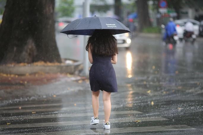 TP HCM xuất hiện mưa vàng giải nhiệt - Ảnh 5.