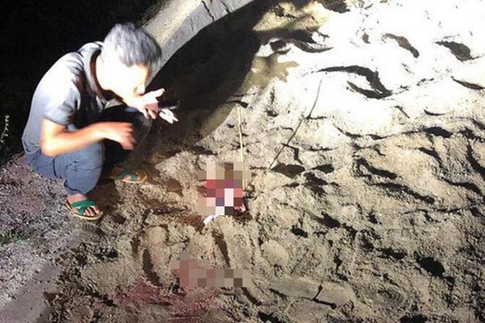 Bé trai 7 tuổi ở Hưng Yên bị đàn chó 6 con cắn tử vong - Ảnh 1.