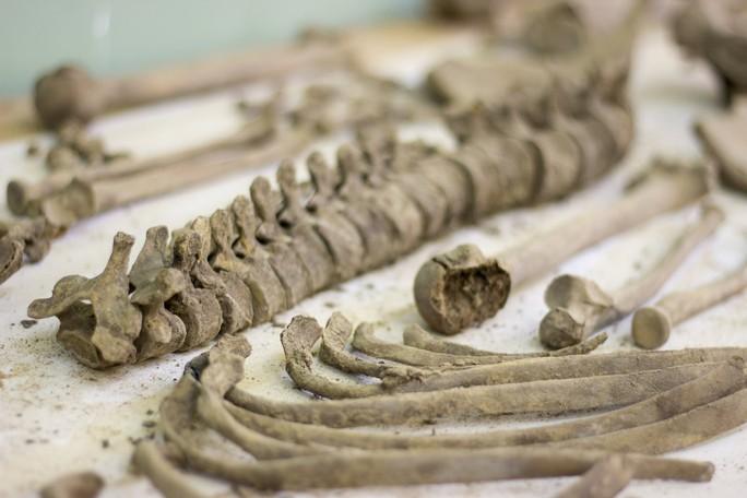 Đào phải hàng trăm ngôi mộ cổ khi đào móng xây chung cư - Ảnh 4.