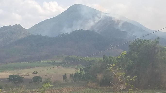 Đang cháy rừng dữ dội tại Gia Lai - Ảnh 1.
