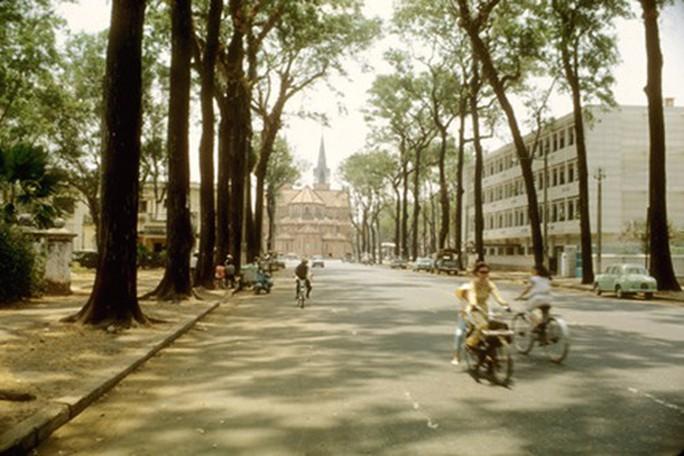 Tháo dỡ biệt thự cổ trên đường Phạm Ngọc Thạch - TP HCM - Ảnh 4.