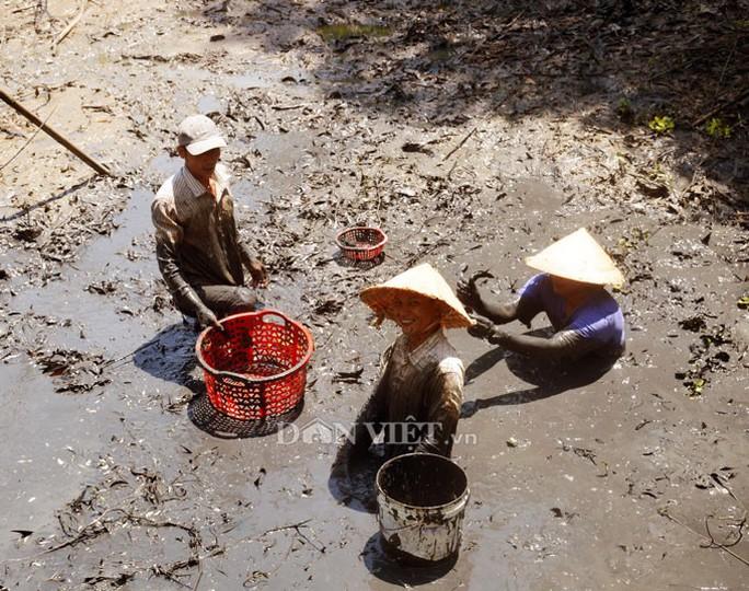 Sướng với cá đồng quẫy loạn xạ ở đìa vừa tát tại huyện Trần Văn Thời - Ảnh 1.