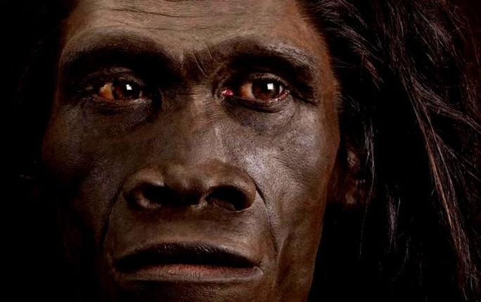 Phát hiện loài người lai chưa từng biết đến ở Châu Á - Ảnh 1.