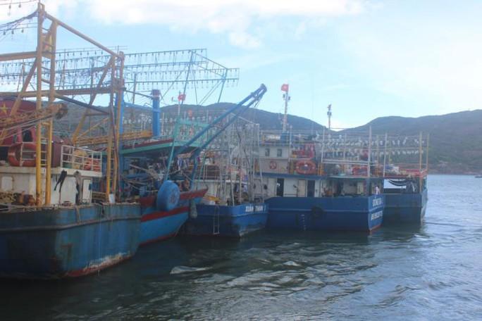 Bình Định dựa vào biển để đi lên - Ảnh 1.