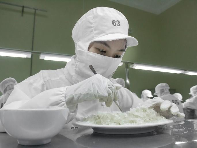Chiêm ngưỡng kho tư liệu quý giá ngành yến sào ở Khánh Hòa - Ảnh 11.