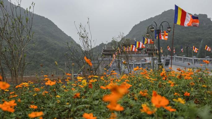 Cận cảnh Chùa Tam Chúc sẵn sàng cho đại lễ Phật đản Vesak 2019 - Ảnh 5.