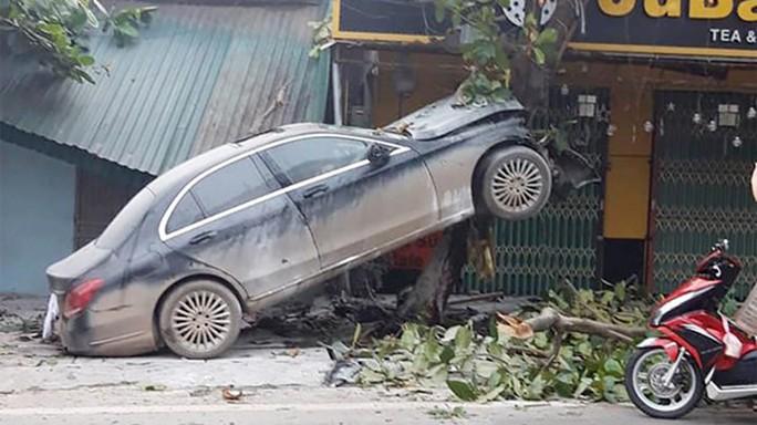 Xế hộp Mercedes bất ngờ leo lên cây bàng, tài xế bị thương - Ảnh 1.