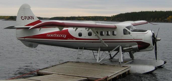 Mỹ: Hai máy bay rơi sau vụ va chạm trên không  - Ảnh 1.