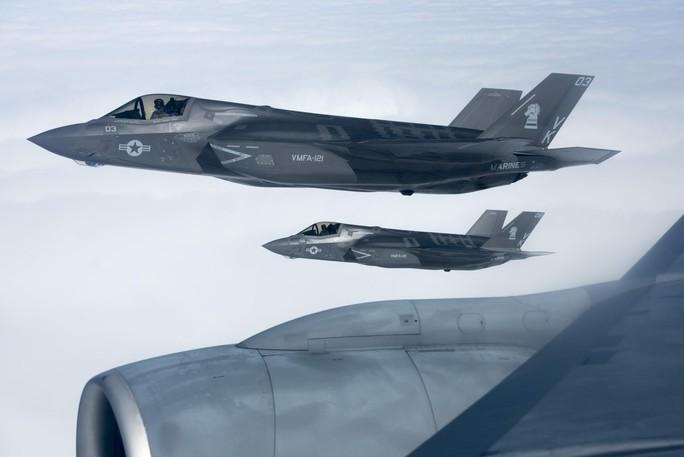 """""""Tia chớp"""" F-35 hỏng nặng vì bị chim đâm trúng - Ảnh 1."""
