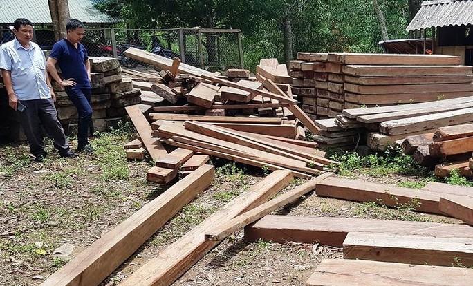 Điểm chứa gỗ lậu ngay trong phòng làm việc của ủy ban xã - Ảnh 1.