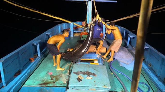 Một triệu lá cờ Tổ quốc cùng ngư dân bám biển(*): Căng sức, cân não giữa biển đêm - Ảnh 1.